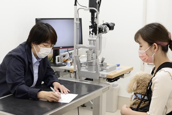 眼科専門動物病院GCの院長と患者様の問診風景